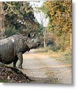 The Rhino At Kaziranga Metal Print