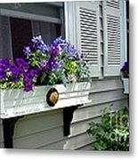 The Right Plant Boxes Metal Print