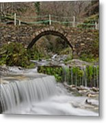The River And The Village Metal Print