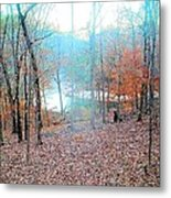 The River In The Forest Metal Print