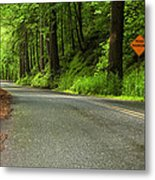 The Road Ahead Metal Print by Andrew Soundarajan