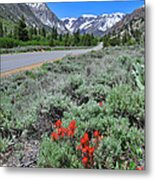 The Road Into Lundy Canyon Metal Print