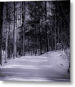 The Road Less Traveled Metal Print by Paul Herrmann