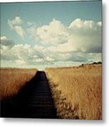 The Road Rarely Taken Metal Print