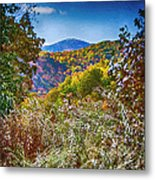 The Road To Cataloochee On A Frosty Fall Morning Metal Print