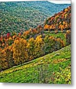 The Road To Glady Wv Metal Print