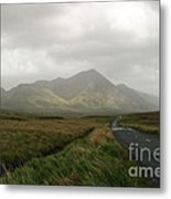 The Road To Tully Cross Metal Print