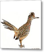 State Bird Of New Mexico Metal Print
