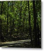 The Roads Of Alabama Metal Print