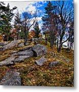 The Rocks Above Eagle Bay IIi Metal Print