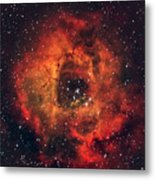 The Rose In The Sky Metal Print