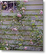 The Rose Shed Metal Print