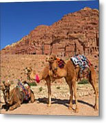 The Royal Tombs Metal Print