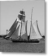 The Sails Metal Print