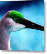 The Sandhilll Crane  Metal Print