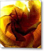 The Scorched Rose Metal Print