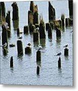 The Sea Gulls Metal Print
