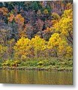 The Season Of Yellow Leaves Metal Print