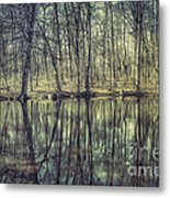 The Sentient Forest Metal Print