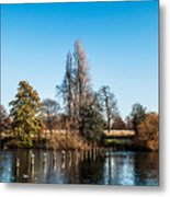 The Serpentine Seagulls Metal Print by Luis Alvarenga