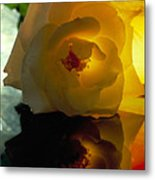 The Shadow Of A Rose Metal Print