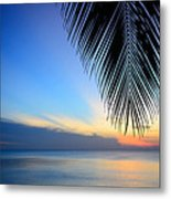 The Silhouette Coconut Leaf Metal Print
