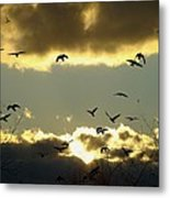 The Sky Opened Metal Print