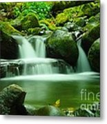 The Small Water Metal Print