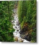 The Snowqualmie River Metal Print