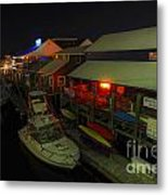 The Solace Of Night Metal Print