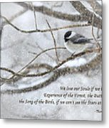 The Song Of The Birds Metal Print