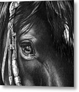 the Soul of a Horse Metal Print