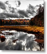 The South End Of Cary Lake Metal Print