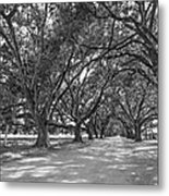 The Southern Way Bw Metal Print