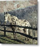 The Speckled Horse Metal Print
