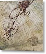 The Spider And The Fly Metal Print