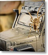 The Spider Series IIi Metal Print
