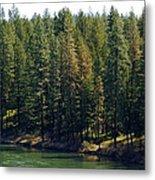 The Spokane River On Easter Sunday 2014 Metal Print