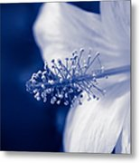 The Spring Wind Whisper Metal Print