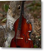 The Squirrel And His Double Bass Metal Print