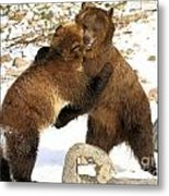 The Stand Off Metal Print