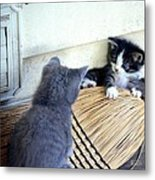 The Stare Down Metal Print