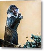 The Starving Ape Metal Print