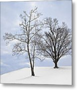 The Summit Metal Print by Wendell Thompson
