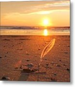 The Sunrise Story Metal Print