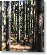 The Surreal Forest Metal Print