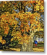 The Swinging Tree Metal Print