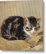 The Tabby Metal Print