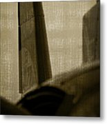 The Tail Metal Print