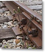 The Tenacity Of Nature Metal Print